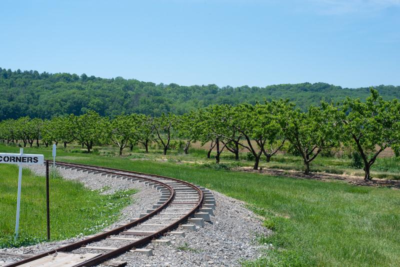 gallery train track
