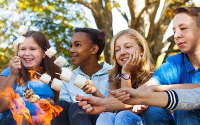 Youth Groups, Girl Guides, Scouts, Brownies, Cubs, Sparks & Beavers
